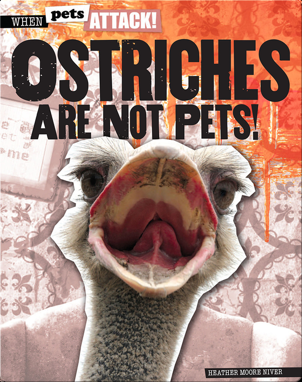 Ostriches Are Not Pets!