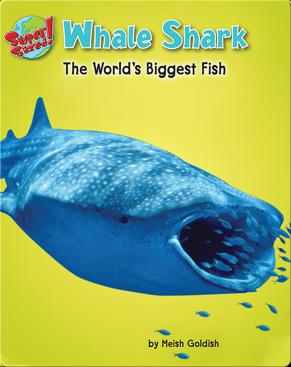 Whale Shark: The World's Biggest Fish