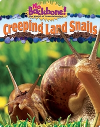 Creeping Land Snails