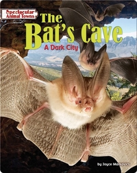 The Bat's Cave: A Dark City