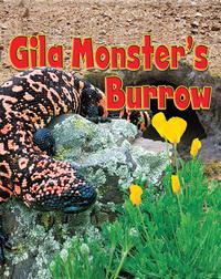 Gila Monster's Burrow