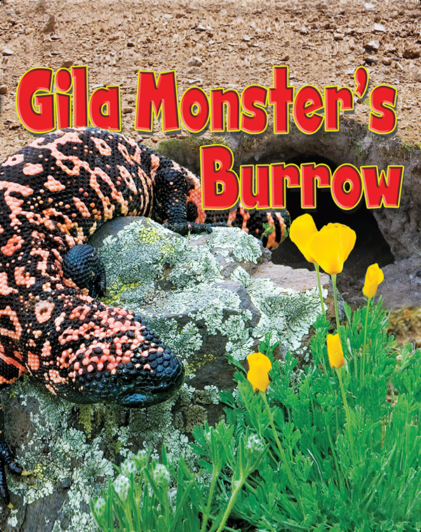 Gila Monster's Burrow