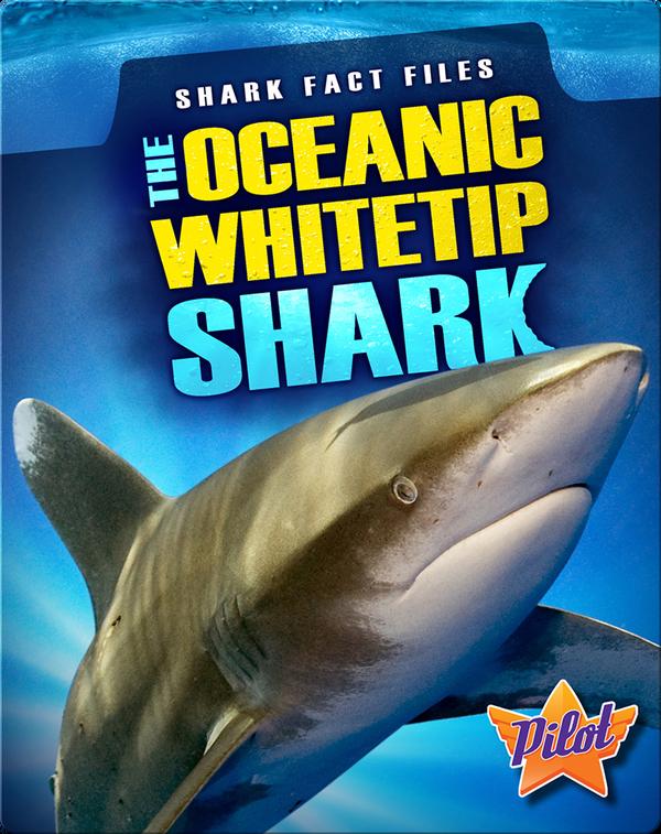 The Oceanic Whitetip Shark