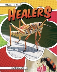 Insects as Healers