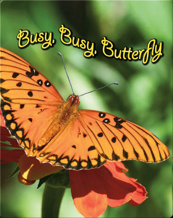 Busy, Busy Butterfly (BBK)