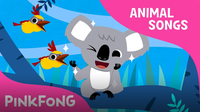 Koala Lalala (Animal Songs)