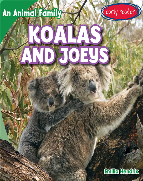 Koalas and Joeys