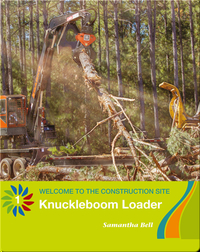 Knuckleboom Loader