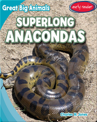 Superlong Anacondas