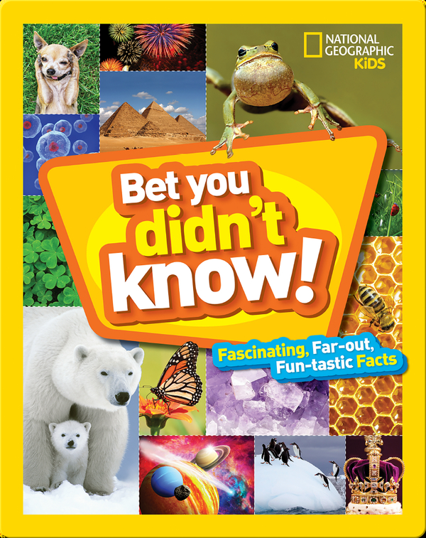 Bet You Didn't Know: Fascinating, Far-out, Fun-tastic Facts!