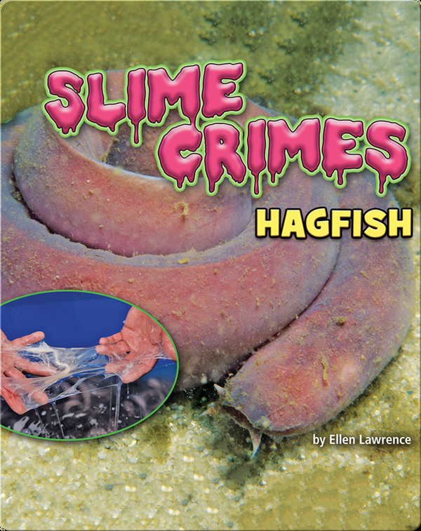 Slime Crimes: Hagfish