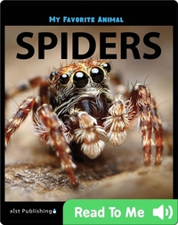 My Favorite Animal: Spiders