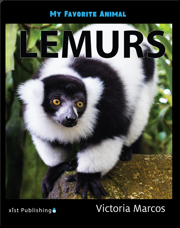 My Favorite Animal: Lemurs