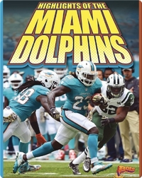 Highlights of the Miami Dolphins