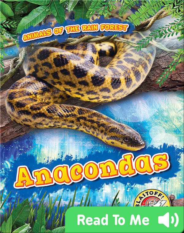 Anacondas