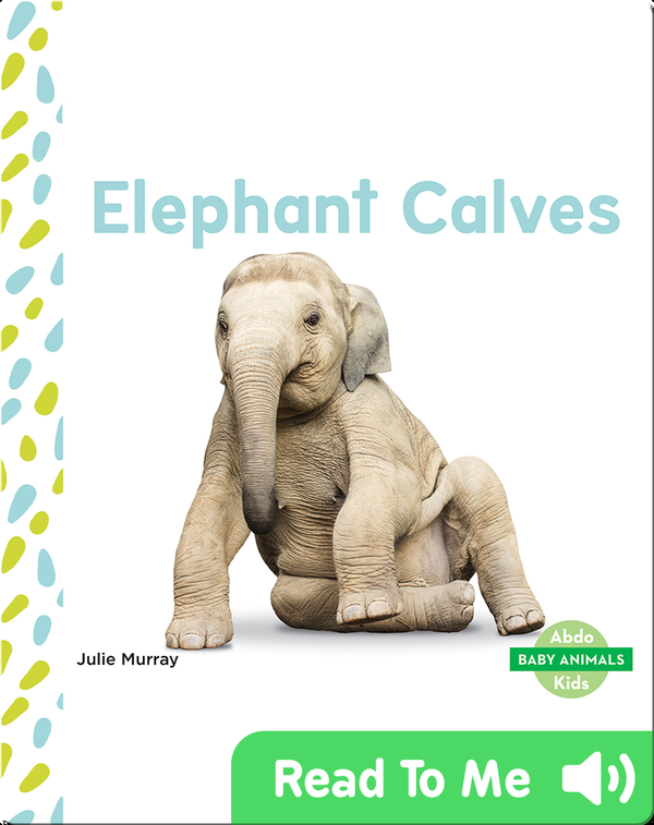 Black Cat Stuffed Animal, Elephant Calves Children S Book By Julie Murray Discover Children S Books Audiobooks Videos More On Epic
