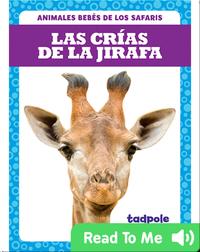 Las crías de la jirafa (Giraffe Calves)