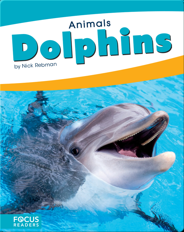 Animals: Dolphins