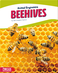 Animal Engineers: Beehives
