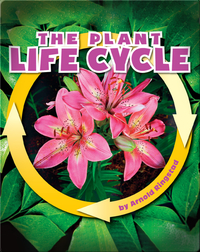 The Plant Life Cycle