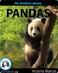 My Favorite Animal: Pandas