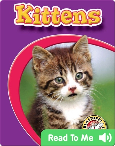 Kittens: Watch Animals Grow