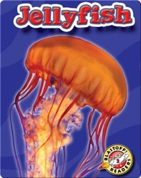 Jellyfish: Oceans Alive