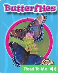 Butterflies: World of Insects