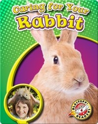 Caring For Your Rabbit: Pet Care Library