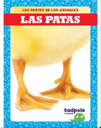 Las partes de los animales: Las patas