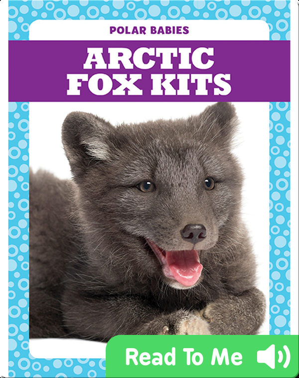 Polar Babies: Arctic Fox Kits