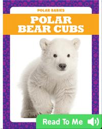 Polar Babies: Polar Bear Cubs