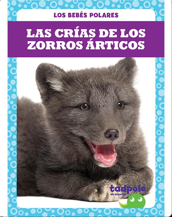 Las crías de los zorros árticos