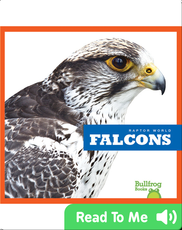 Raptor World: Falcons