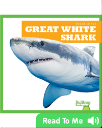Shark Bites: Great White Shark
