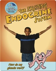 The Exciting Endocrine System