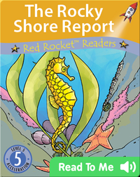 The Rocky Shore Report