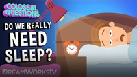 What If You NEVER Slept Again? | COLOSSAL QUESTIONS