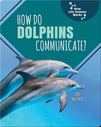 How Do Dolphins Communicate?