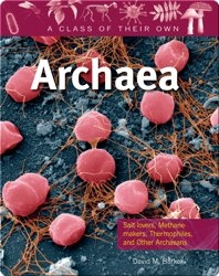 Archaea: Salt-lovers, Methane-makers, Thermophiles, and other Archaeans