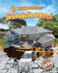 Natural Disasters: Sinkholes