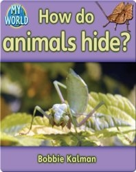 How do Animals Hide?