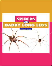 Comparing Animal Differences: Spiders and Daddy Long Legs