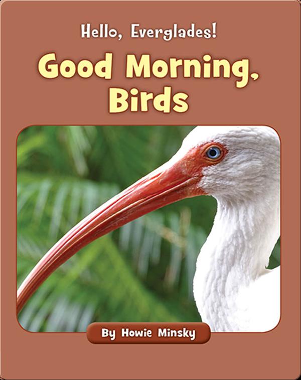 Hello, Everglades!: Good Morning, Birds