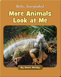 Hello, Everglades!: More Animals Look at Me