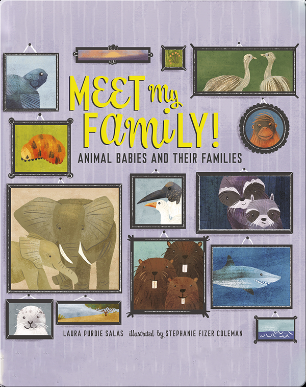 Meet My Family!: Animal Babies and Their Families
