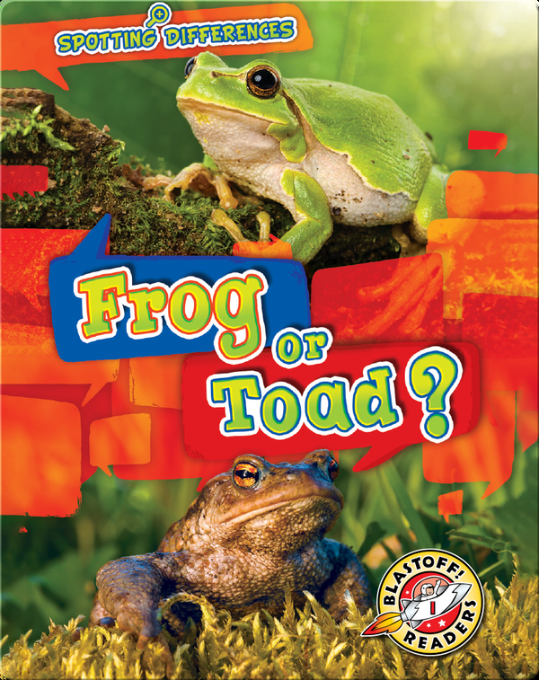 Spotting Differences: Frog or Toad?