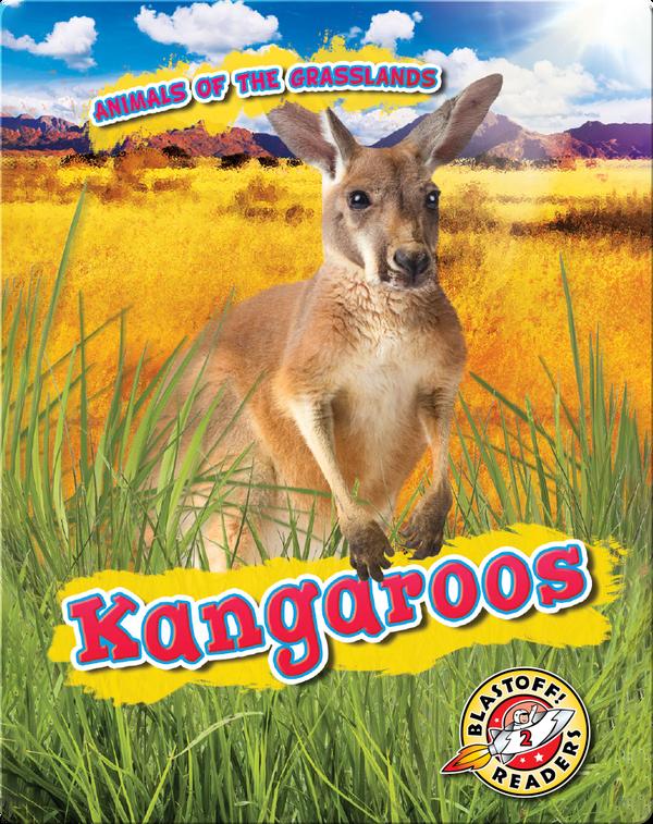 Animals of the Grasslands: Kangaroos