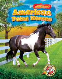 Saddle Up!: American Paint Horses