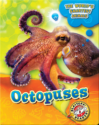 The World's Smartest Animals: Octopuses